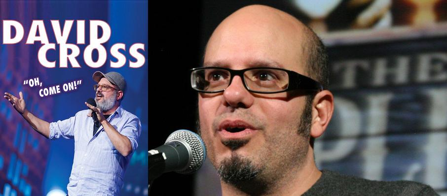 David Cross at Orpheum Theatre