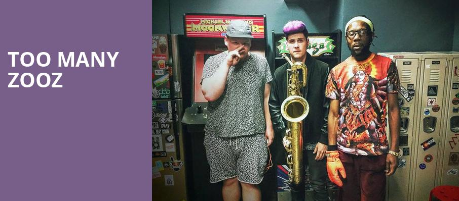 Too Many Zooz, Majestic Theatre, Madison